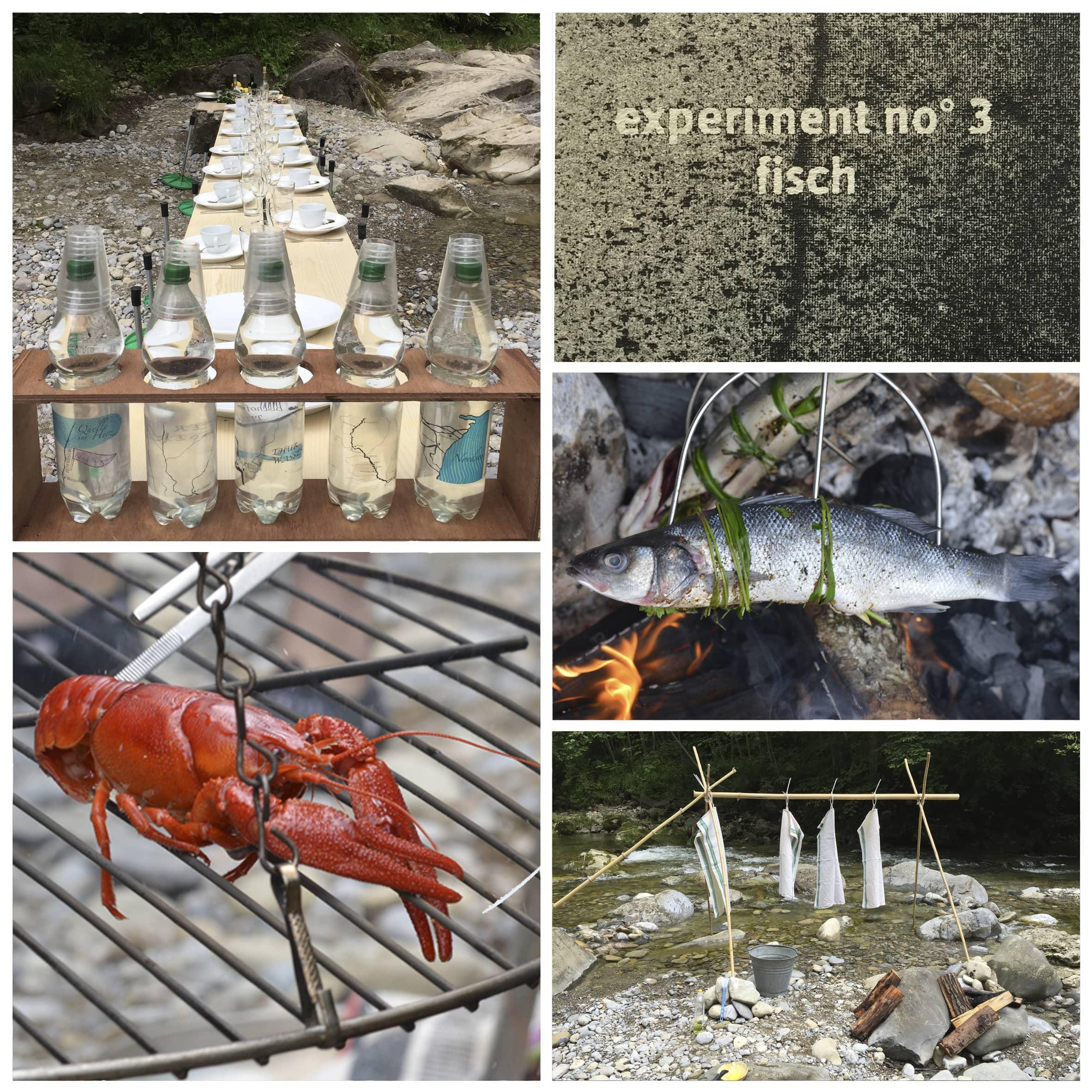 03-Experiment-Fisch-min